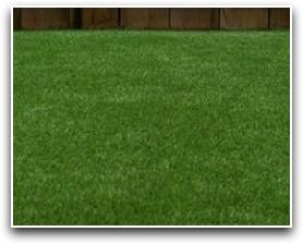 millbrook-artificial_grass_1