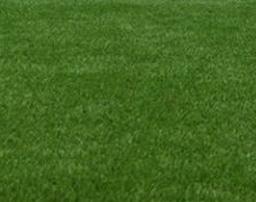 Millbrook-paving-centre-artificial-grass